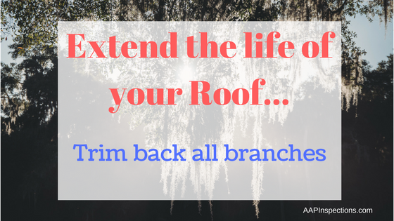 Trim back branches from your roof to extend the life of it