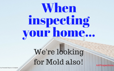 Looking for Mold During the Home Inspection